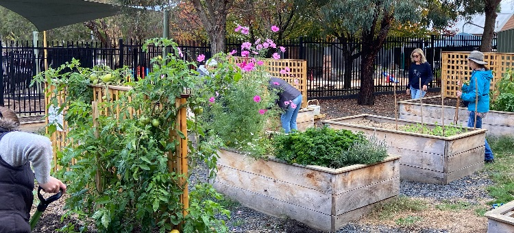 Growing Participation in Community Gardening